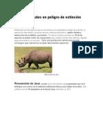 Top 10 Animales en Peligro de Extinción