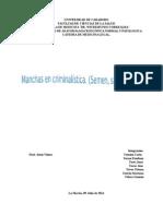 Analisis Grupal Medicina Legal