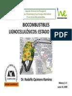 Biocombustibles,Estado Del Arte