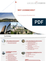 AMCHAM Why Luxembourg PDF