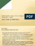 Vectori şi matrici