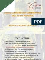 Conceptos Curriculares_2013