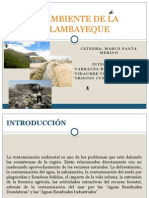 Medio Ambiente Region Lambayeque-grupo 5