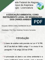 Erika Camila Apresentação 11_03