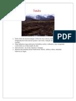 Os Grandes Biomas Terrestres.doc