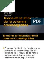 Teoría de La Eficiencia de La Columna Cromatográfica