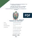 Informe Sistemas de Informacion de sistema de matricula