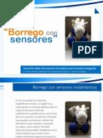 Ejemplo Borrego