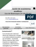 Contaminación de ecosistemas acuáticos