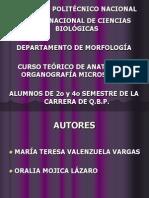 APARATO DIGESTIVO TEORÍA.pdf