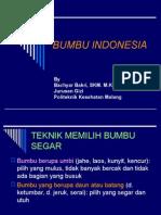 Bumbu Indonesia2
