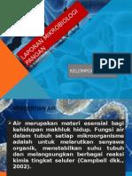 Laporan Mikrobiologi Pangan Fix