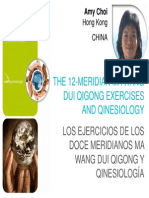 AmyChoi_qinesiology