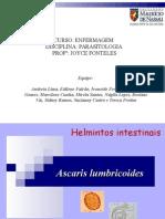 TRABALHO ASCARIS LUMBRICOIDES 2.ppt
