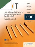BOIT Good Practice Brochure RO