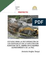 Medidas de Mitigacion Para La Recuperación de Los Bofedales en La Explotacion Aurifera en El Anmin Apolobamba Departamento de La Paz