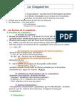 10-coagulation.docx