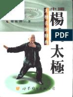 Yang Zhenduo; Yang Style Taijiquan 中国杨氏太极—杨振铎着
