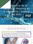 Lm y Desarrollo Cerebral en El Niño