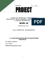PROIECT Incarcarea, Descarcarea si Transportul Marfurilor.doc