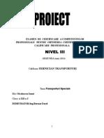Proiect Transporturi Speciale.doc