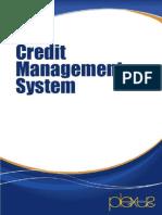 Credit Management System 1