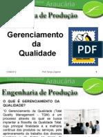 Seminário - Gerenciamento Da Qualidade - Prof Sérgio Zagonel