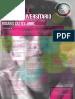 Ensayo Universitario CONVOCATORIA