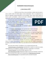 42028338-Instituțiile-Uniunii-Europene-referat-bun.doc