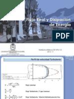 04 Flujo Real y Discip Energia_4