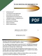 Gestão_Econômica_Distribuição