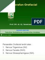 4.20 Persarafan Orofacial