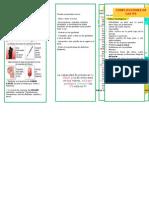 ITS TRIPTICO OFICIAL.docx