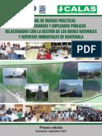 Manual Buenas practicas funcionarios ambientales.pdf