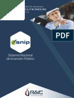 CURSO VIRTUAL | Snip Sistema Nacional de Inversión Pública | 12 febrero