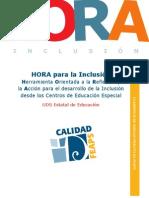 Hora.Herramienta Orientada a la Reflexión y la Acción para el desarrollo de la Inclusión desde los Centros de Educación Especial