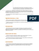 Explicacion Del Desarrollo, Conclusiones