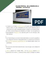 Equipo-1-Reserva-y-Manglar.docx