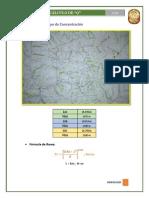 Cálculo de Q en Cuenca Río Piquijaca