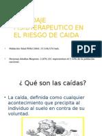 Abordaje Fisioterapeutico en El Riesgo de Caida Expo 7