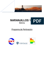Programa de Perforación pozo Naranjillos 120.pdf