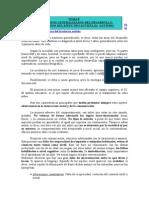 tema-8-autismo.doc