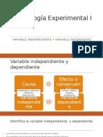 Variable Independiente y Dependiente