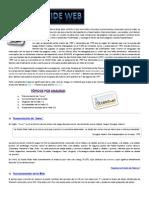 Que es la WEB.pdf