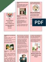 Leaflet Lansia