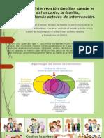 Tecnicas y Manejo de estrategias de intervencion familiar
