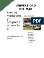 Plan de Marketing y Programa Promocional
