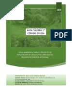 Lucero 1 Ficha Ambiental