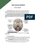 Nervii Cranieni-referat Anatomie