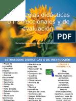 Estrategias Didácticas y de Evaluación 2014
